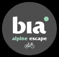 Alpine Escape_Grey dot